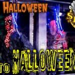 Halloween – Eierwerfer ermittelt